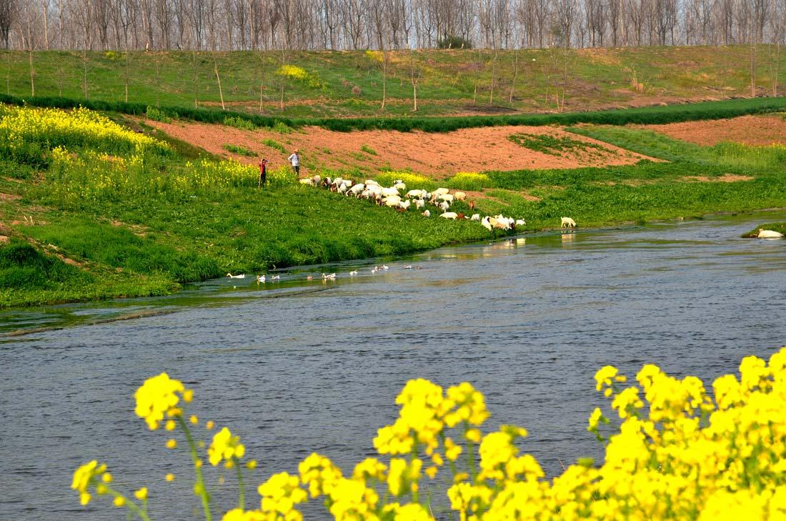 淮河流域第二批重点河湖生态流量保障目标确定工作完成